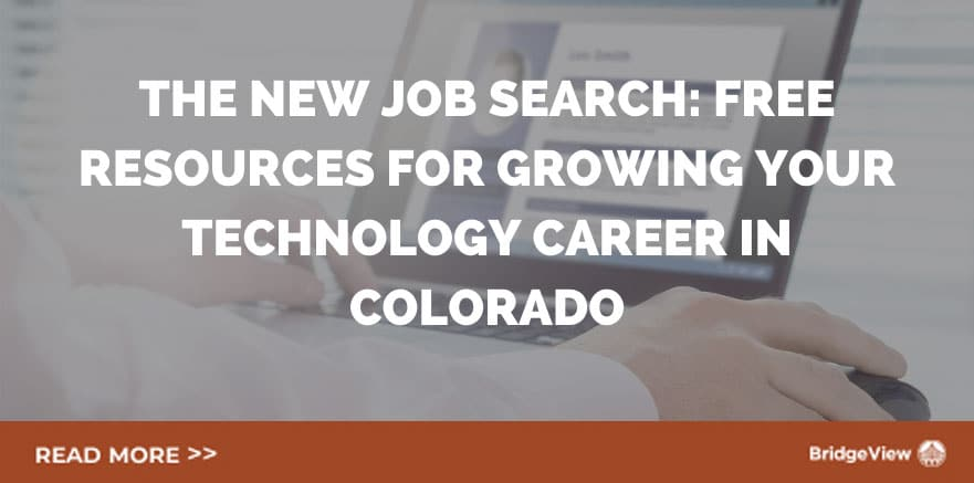 The-New-Job-Search